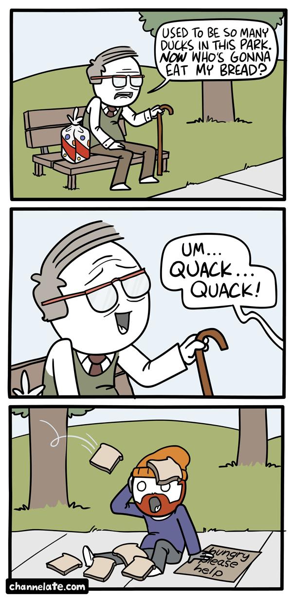 Ducks.