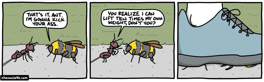 Ant vs Bee.